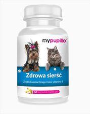 suplement diety dla zwierząt