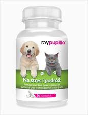 suplementy diety dla psów i kotów