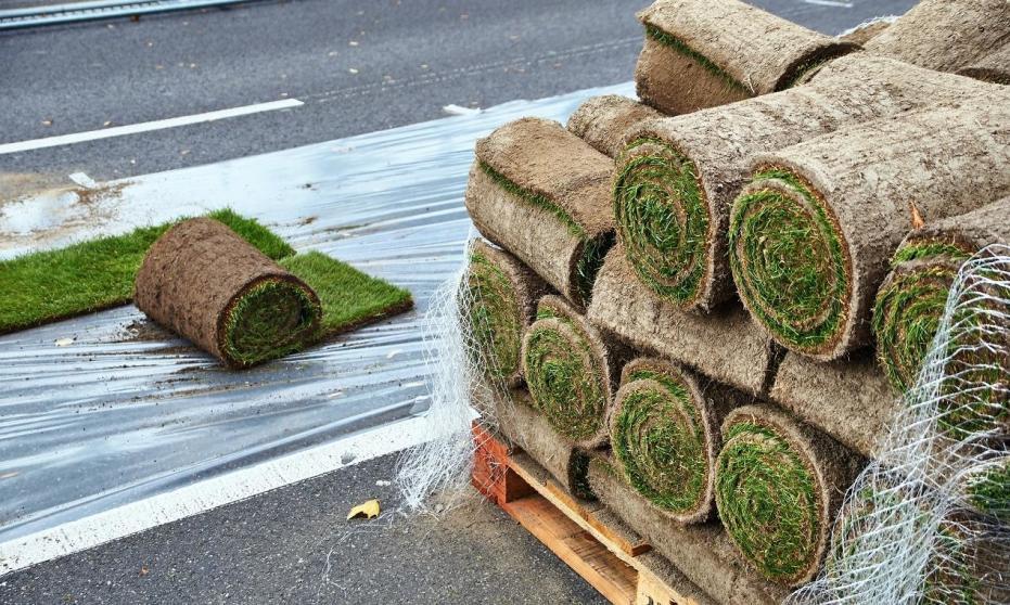 Jak transportuje się darń rolowaną?