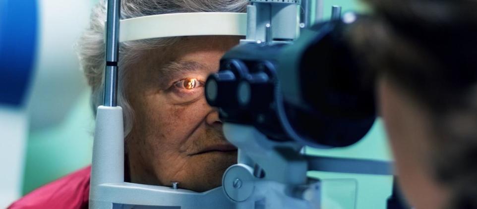 AMD – metoda diagnostyki
