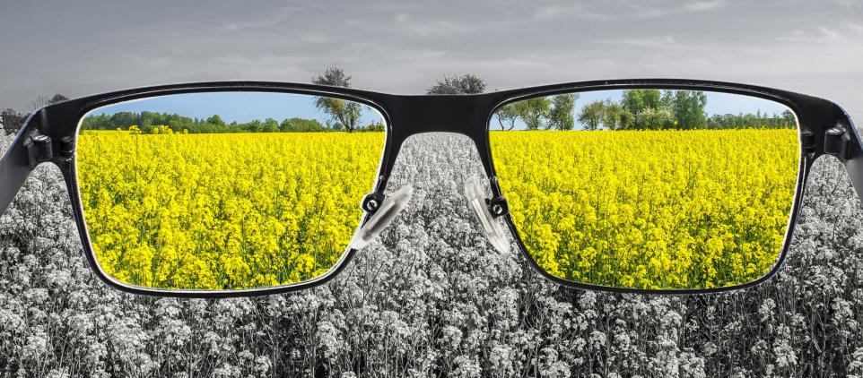 Czym jest daltonizm? Objawy i leczenie