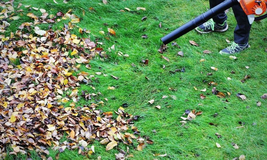 Sprawdzone metody odgarniania liści