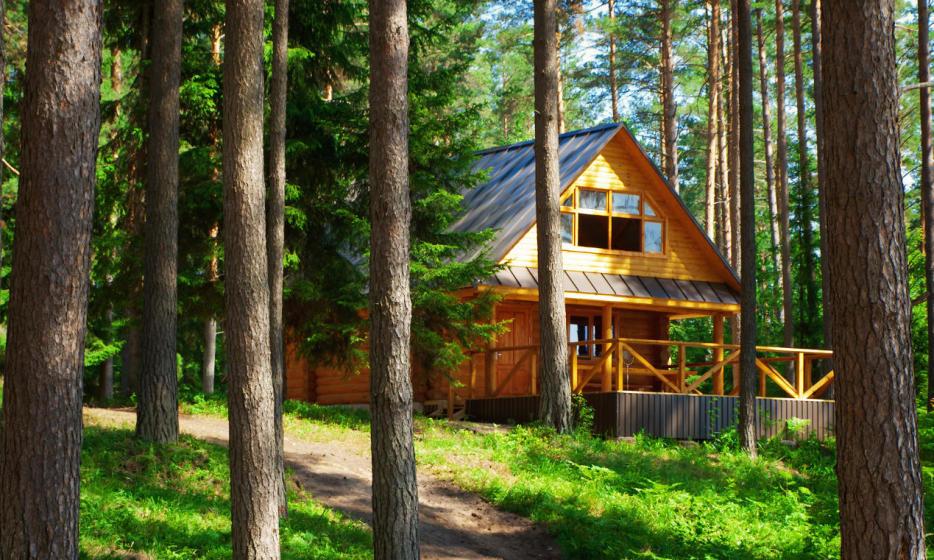 Fakty i mity na temat domków z drewna