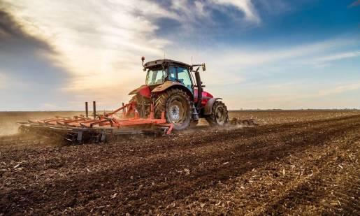 Rola agregatów ścierniskowych w uprawie pożniwnej