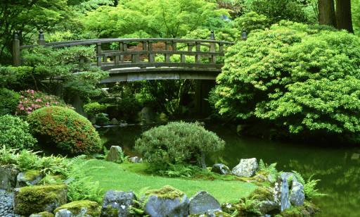Ogród japoński – jak zaprojektować i czym się cechuje?