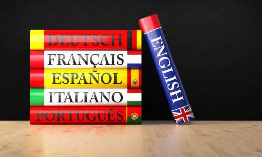 Słowniki jak podstawowa pomoc w nauce języka
