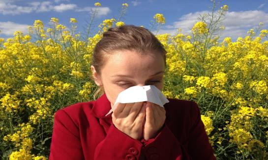 Rodzaje badań alergologicznych