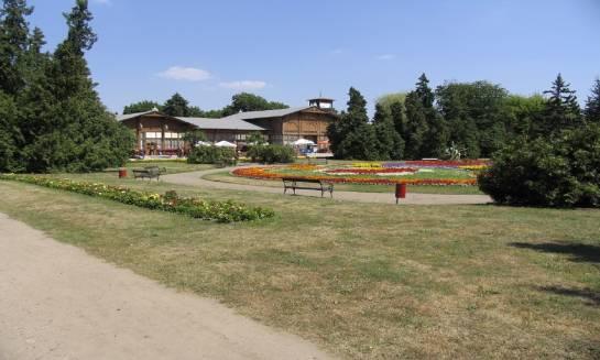 Dlaczego Ciechocinek to popularne miasto uzdrowiskowe?