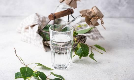 Właściwości odżywcze soku z brzozy