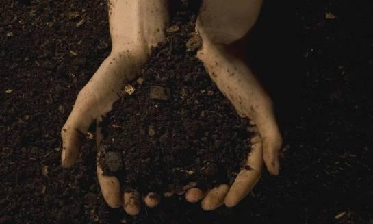 Odkażanie ziemi w ogrodzie