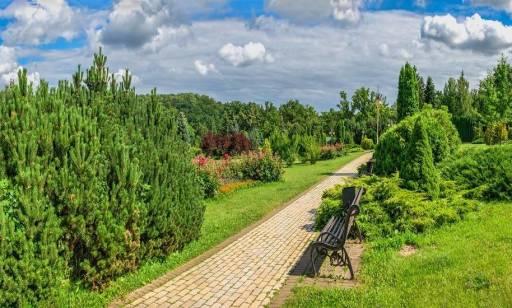 Jakie zalety ma ułożenie ścieżki z kostek brukowych w Twoim ogrodzie?