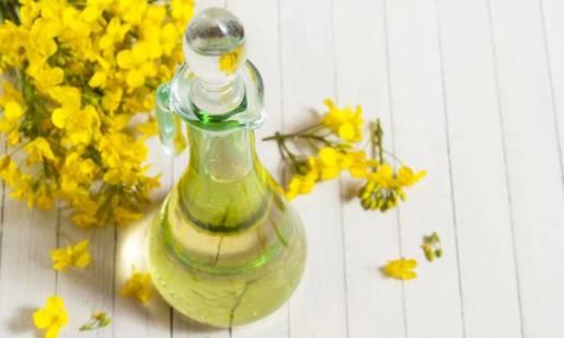 Tłoczenie oleju z nasion rzepaku. Jak to zrobić u siebie w gospodarstwie?