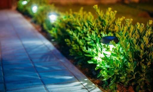 Ozdobne lampy solarne w ogrodzie jako ciekawa i praktyczna dekoracja