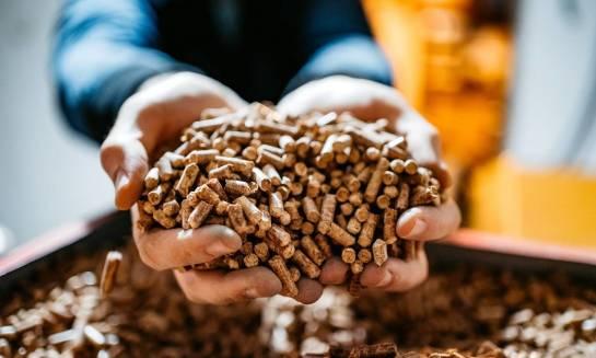 Certyfikat EcoDesign - jakie warunki muszą spełniać kotły na pellet, aby go otrzymać?