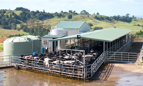 Czy ogrodzenia panelowe nadają się do grodzenia bydła?