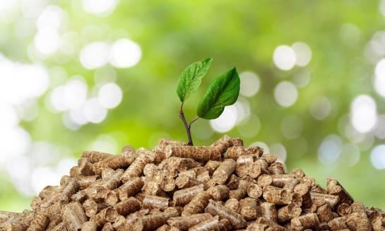 Dlaczego pellet klasyfikuje się jako biomasę?