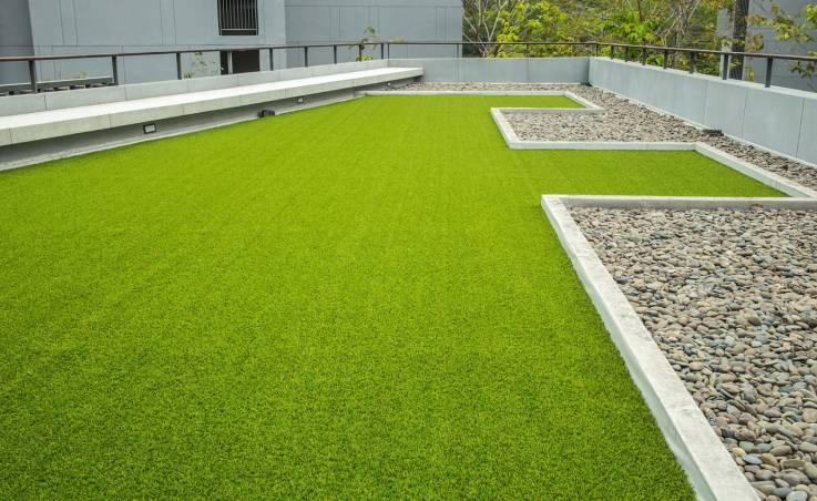 Jakie rośliny są odpowiednie do projektowania zielonego dachu