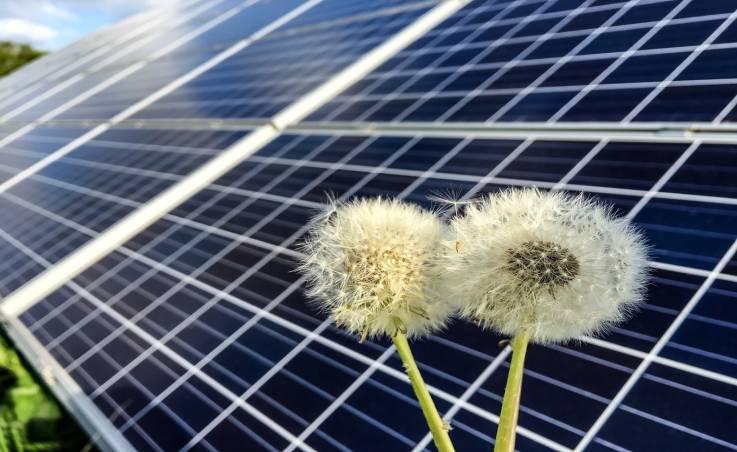 Nowoczesne technologie domowe korzystające z odnawialnych źródeł energii