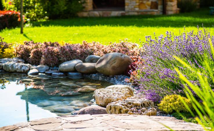 Oczka wodne i filtry wody w ogrodzie