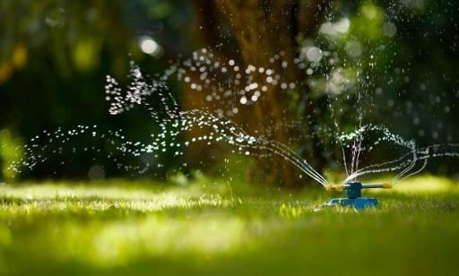 Podlewanie ogrodu: jaki zraszacz wybrać?