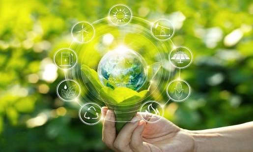 Jak promować ekologię?