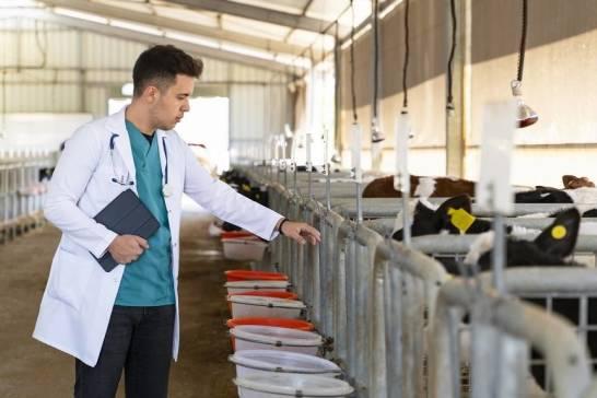 Jaka jest odpowiednia ilość bakterii w mleku?