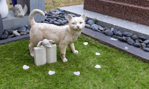 Jak założyć cmentarz dla zwierząt?
