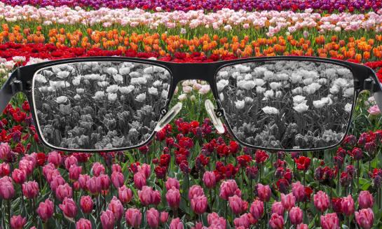 Czym jest daltonizm? Przyczyny, objawy i leczenie