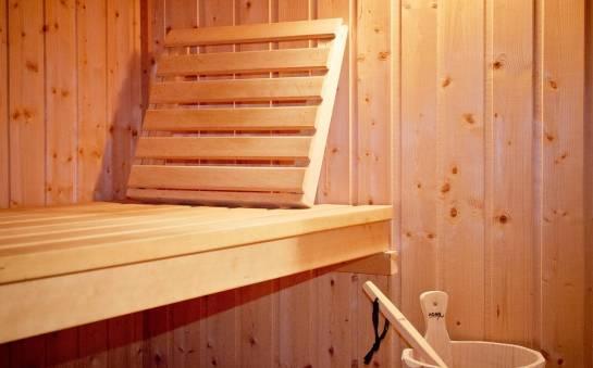 Budowa sauny fińskiej w domu – co warto wiedzieć?
