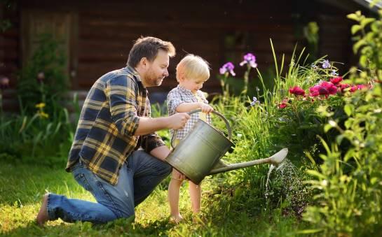 Podstawowe prace ogrodnicze