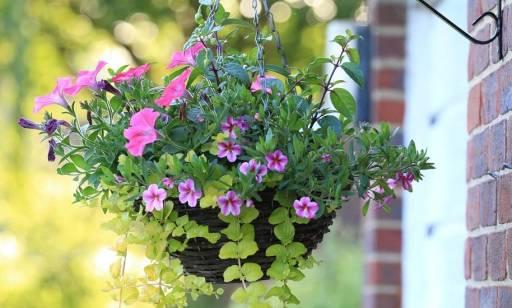 Kosz kwiatowy jako ciekawa alternatywa dla bukietu