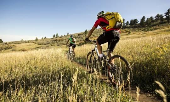 Wybór roweru górskiego. Na co zwrócić uwagę?