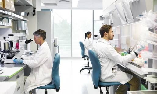 Analiza modalna w warunkach laboratoryjnych i podczas eksploatacji w warunkach naturalnych