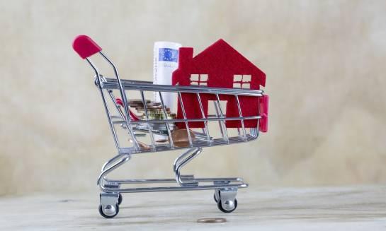 Gdzie szukać pewnych ofert o sprzedaży działek?
