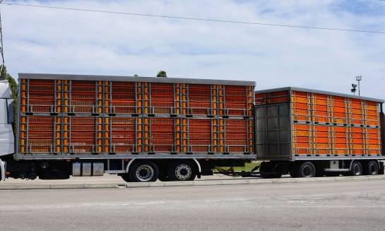 Jak zamocować i zabezpieczyć ładunek na czas transportu?