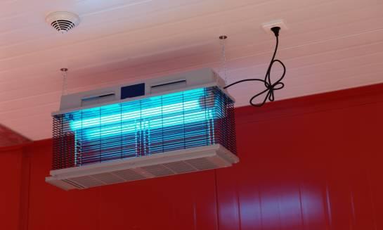 Lampa owadobójcza - dobry sposób na natrętne owady latające