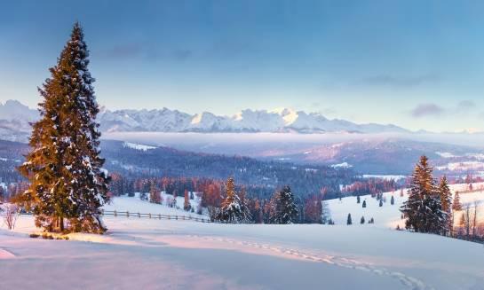 Wczasy w polskich górach. Które miejsca warto odwiedzić?