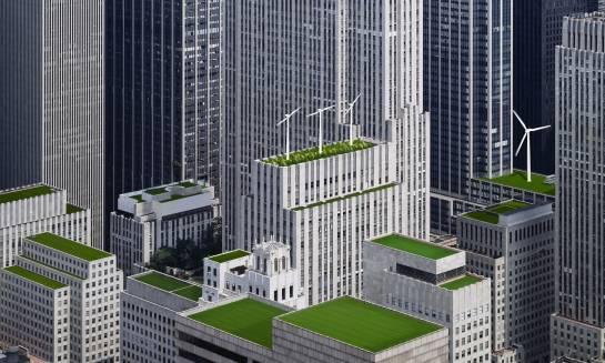 Z ilu warstw składa się zielony dach?