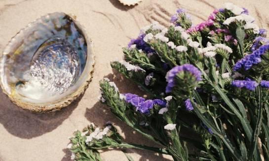 Mało znane kwiaty jednoroczne, które są naprawdę imponujące