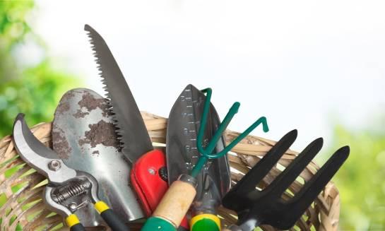 Zaczynamy uprawiać przydomowy ogród. Jakie narzędzia ręczne wybrać na początek?
