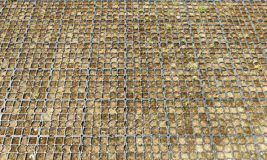 Planowanie kratek trawnikowych w przydomowym ogrodzie