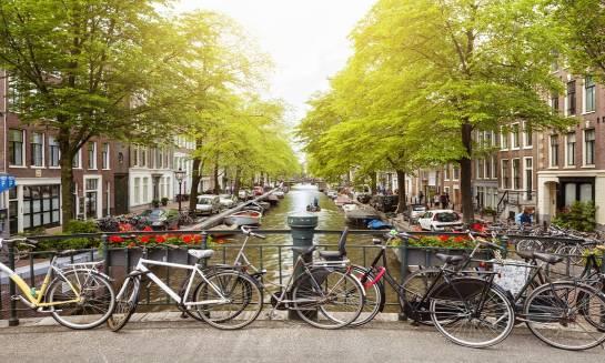 Dlaczego kraje Beneluksu to popularny kierunek wyjazdów zagranicznych?