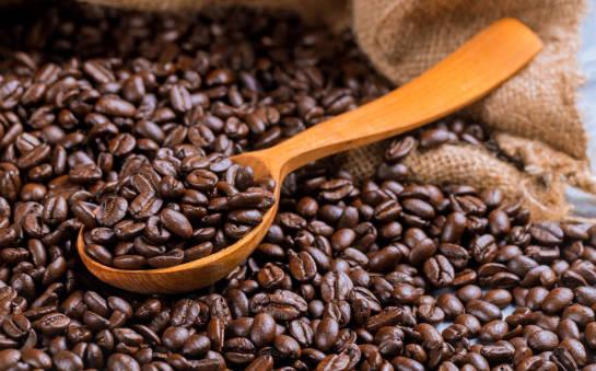 Czym różni się kawa arabica od robusty?