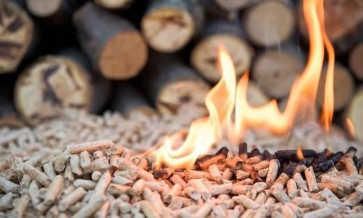 Czy palenie biomasą jest ekologiczne?
