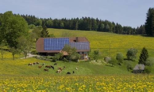 Fotowoltaika w zastosowaniach rolniczych