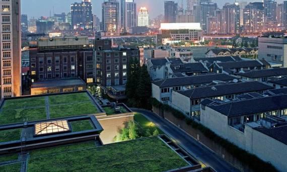 Zielony dach sposobem na poprawę izolacji termicznej i akustycznej budynku