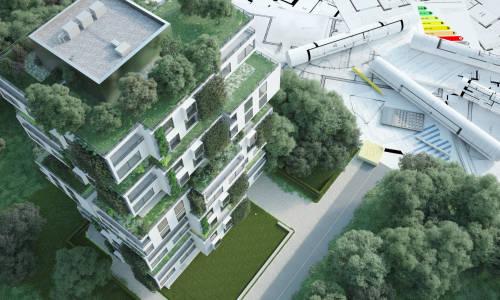 Zielone dachy - przyszłość architektury miejskiej