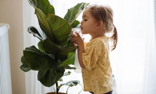 Czy sztuczne kwiaty są przyjazne dzieciom?
