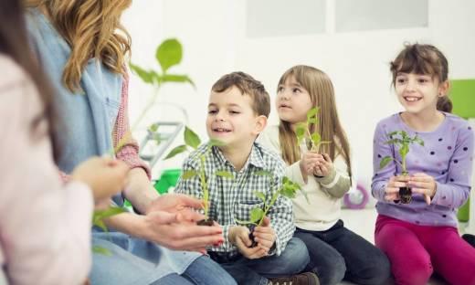 Ekologia w przedszkolu – jak uczyć dzieci szacunku dla przyrody?