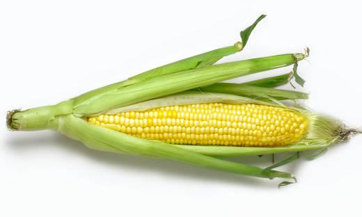 Jak gotować kukurydzę? Zastosowanie i właściwości